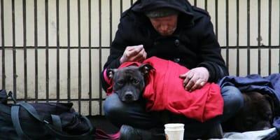 senzatetto-e-cane