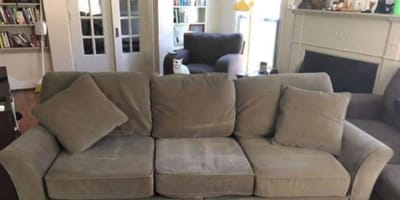Large grey sofa and white cat