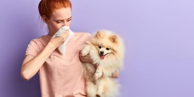 Warum riechen Hunde und Hündinnen manchmal nach Fisch?