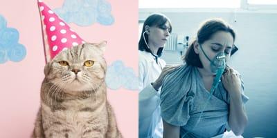 Fiesta de cumple de un gatito deja 15 personas contagiadas de Covid