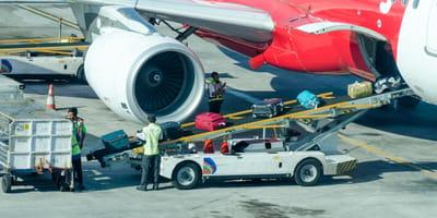 Fluglotse entdeckt Käfig zwischen Koffern: Panisch wird ihm klar, was passiert ist