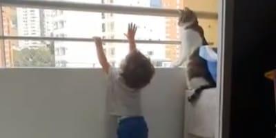 Bambino si sporge dal balcone, il gatto non ci sta! (Video)