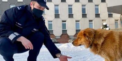 Policjant i pies.