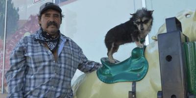 La tierna historia detrás del perro que monta un caballito de juguete