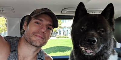 Actor Henry Cavill and dog Kal