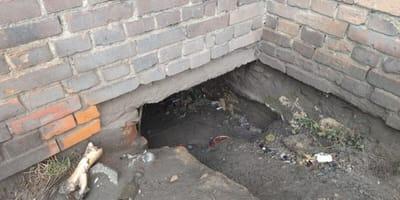 Hole dug beneath building