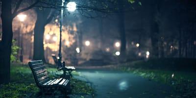 Parkbank bei Nacht