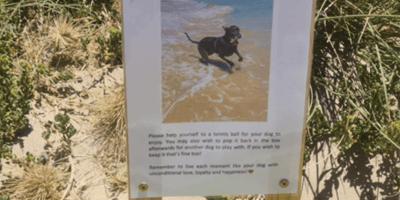 Dog owners can't hold back tears when they read the sign at Silver Sands Beach