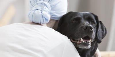 perro labrador negro abraza a una mujer con un panuelo en la cabeza