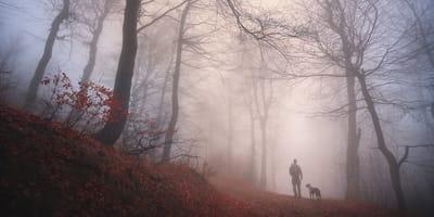 Człowiek na tle zamglonego lasu