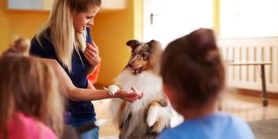 Todo lo que hay que saber sobre las intervenciones asistidas con animales