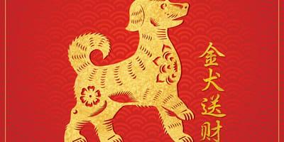 perro calendario chino año nuevo 2021