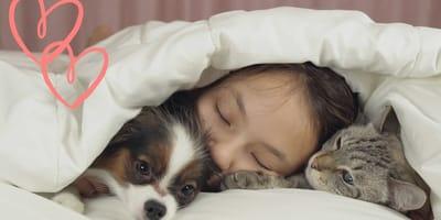 San Valentín 2021: estos perros y gatos te harán creer en el amor (aunque te cueste)