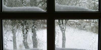 Kobieta słyszy pukanie do okna. Kiedy widzi kto to, natychmiast rusza na ratunek