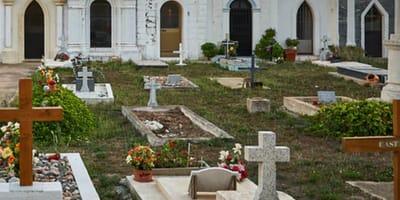 Escuchan gemidos desesperados al fondo de una tumba abierta: cuando se asoman se les encoge el corazón