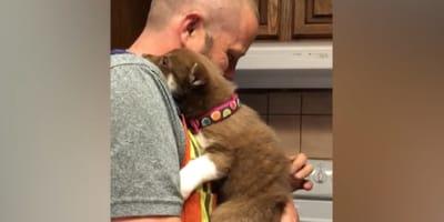 L'emozione di un padre alla vista di un cucciolo di Husky (Video)