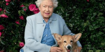 L'ultimo Dorgi conforta la Regina mentre il principe Filippo è in ospedale