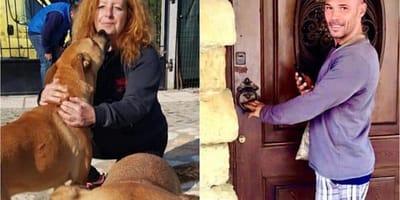 Giornata del volontario per gli animali: la proposta di legge