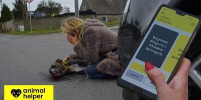 <p>Animal Helper pomoże w szybkim wezwaniu służb do zwierząt potrzebujących pomocy</p>