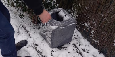 Un transeúnte encuentra una canasta abandonada en la nieve: ¡no está vacía!