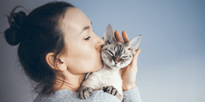Purina's allergen reducing cat food voted 2021 product of the year by pet owners