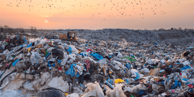 Woman walks past landfill and makes a shocking discovery
