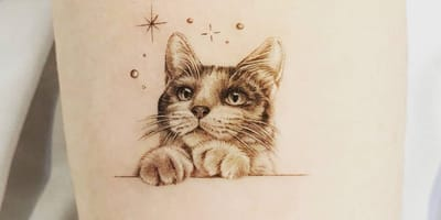 <p>Realistyczny tatuaż z kotem</p>