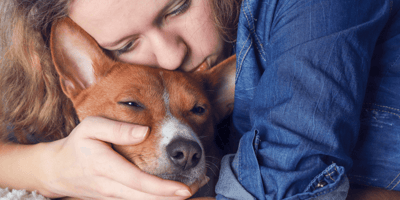 Do dogs know they are dying? How to comfort them and say goodbye
