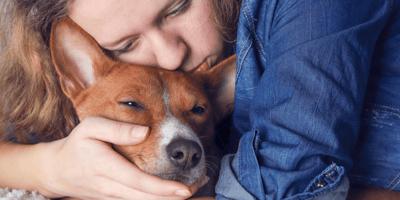 I cani capiscono quando stanno per morire? Come confortarli
