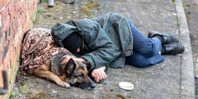 Clochard e cani: il Comune di Torino cancella il divieto