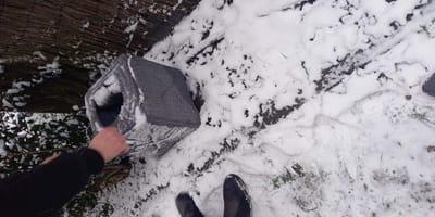 Przechodzień widzi kosz porzucony na śniegu: niestety nie jest pusty...