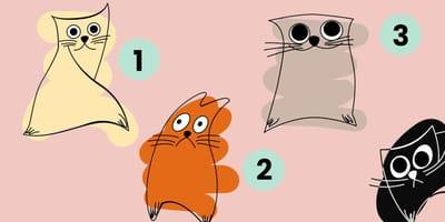 El gato que elijas revela tu personalidad: el test que está causando sensación