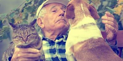 esperanza de vida de perros y gatos