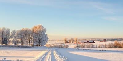Winterlandschaft im Schnee