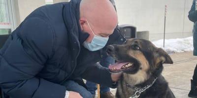 Adotta un Pastore Tedesco che nessuno vuole: il cane gli salva la vita