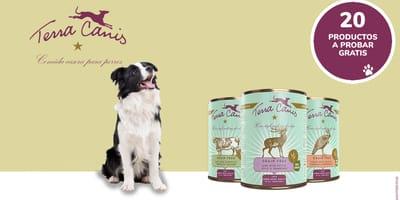 ¡Prueba gratis la comida GRAIN-FREE de Terra Canis para perros!
