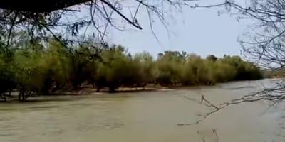 Lerdo: Observa el río que va crecido y en eso distingue dos figuras atrapadas en un islote