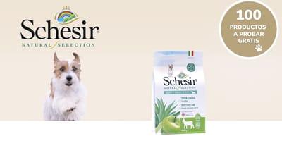Prueba gratis el pienso Schesir Natural Selection Adultos para perros pequeños