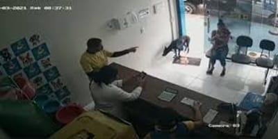Bezdomny pies wchodzi do kliniki weterynaryjnej i prosi o pomoc (VIDEO)