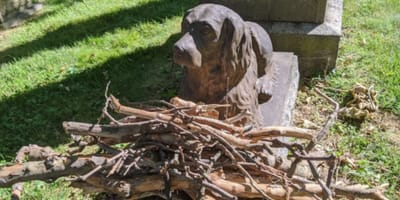 Bronze dog statue