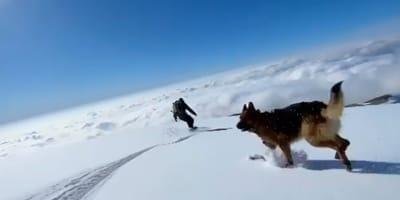 Snowboarder und Hund vor blauem Himmel