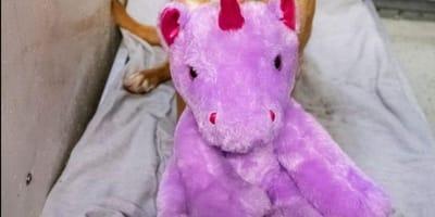 Stuffed purple unicorn toy