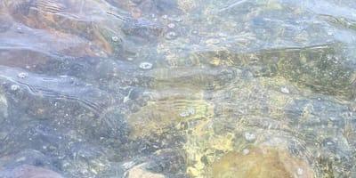 agua del mar que esconde algo impresionante