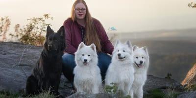 Samoyedo: ¿la última víctima de las modas caninas? La criadora responde