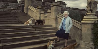 The Queen's dogs: The history behind Her Majesty's love for dogs