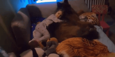 Watch: Mum turns on light in daughter's room, realises she isn't sleeping alone