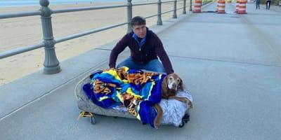 Echtpaar bouwt bed op wieltjes zodat hond nog één keer het strand kan zien
