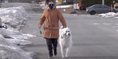 donna e cane a passeggio