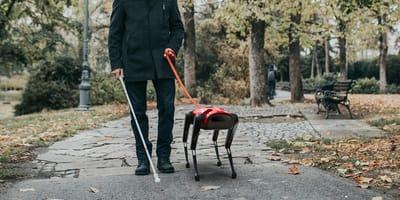 Perro robot AlphaDog paseando con su dueño
