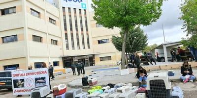 Vivotecnia: el laboratorio de los horrores desenmascarado en Madrid